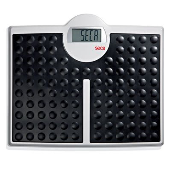 Picture for category Scales